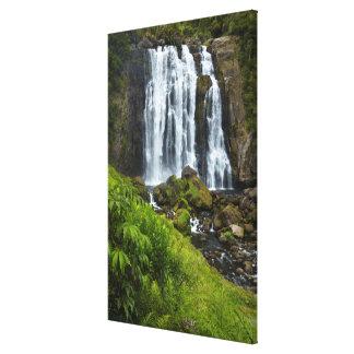 Marokopa Wasserfall, Neuseeland Leinwanddruck