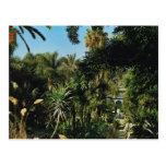 Marrakesch, Majorelle Gärten, Marokko Postkarten