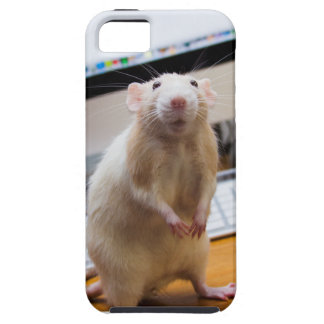 Marty MausiPhone Fall - Standin hoch! iPhone 5 Case