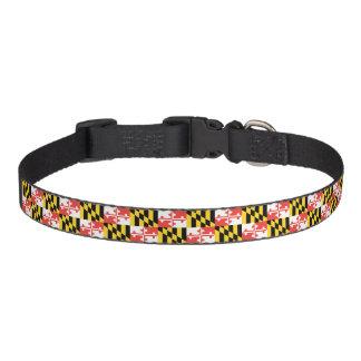 Maryland-Flaggen-kleines Medium und großes Haustierhalsband