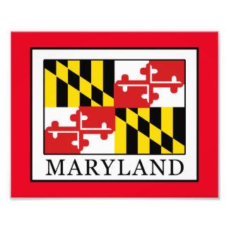 Maryland Fotodruck
