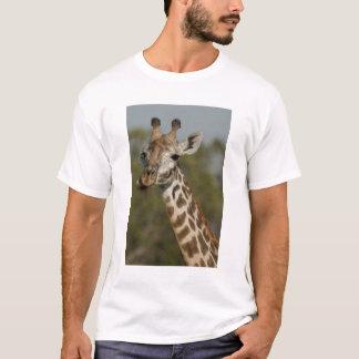 Masai-Giraffe, Giraffa camelopardalis T-Shirt