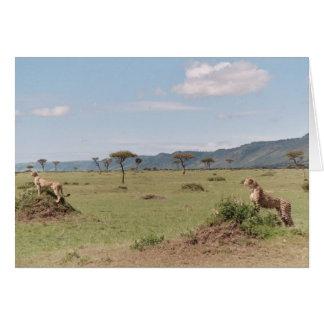 Masai Mara Karte