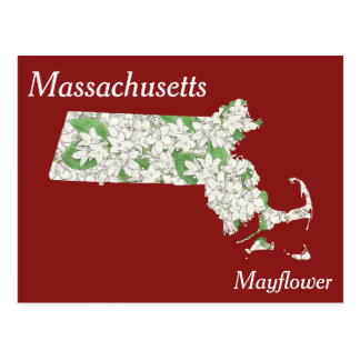 Massachusetts-Staats-Blumen-Collagen-Karte Postkarte