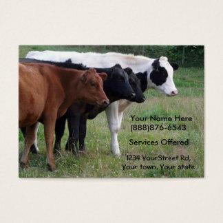 Mastvieh-Tierarzt oder Befruchtungs-Service-Karte Visitenkarte