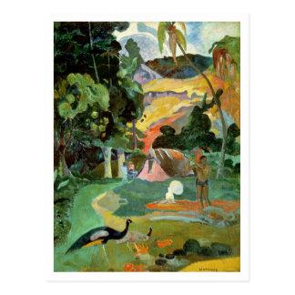 Matamoe oder, Landschaft mit Pfaus, 1892 Postkarte