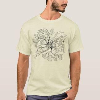 Mathe-Baum-T - Shirt LICHT