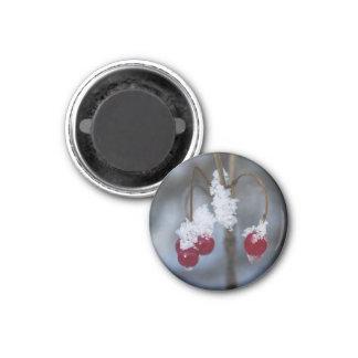 Mattierte Beeren Runder Magnet 3,2 Cm