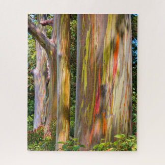 Maui-Eukalyptus Puzzle