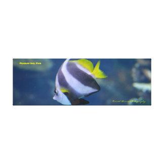 maurische eingewickeltes Leinwand-Foto des Leinwanddruck