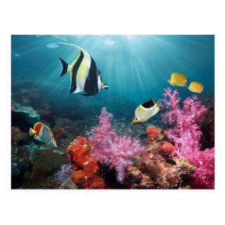 Maurisches Idol der Korallenriff-Landschafts-| Postkarte
