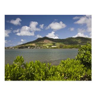 Mauritius, Südmauritius, großartiger Zobel, Postkarte