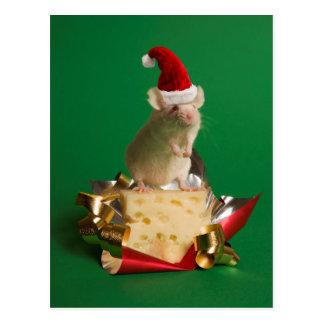 Maus mit Sankt Hut mit Käse Postkarte