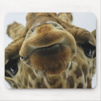 Mauspad Giraffe Kuss