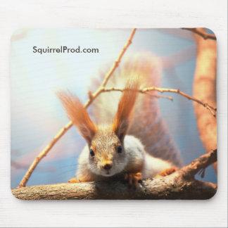 Mausunterlage mit Eichhörnchen Mauspads