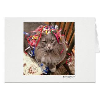 Maximal die Katze   #-7 Karte