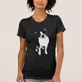 Maxx Boston der schwarze T - Shirt Frauen