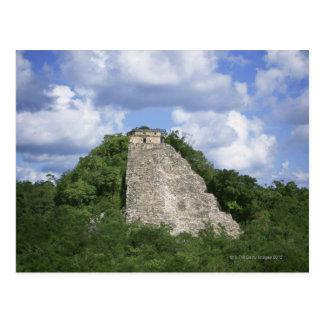 Mayaruinen von Coba, Yucatan-Halbinsel, Mexiko Postkarte