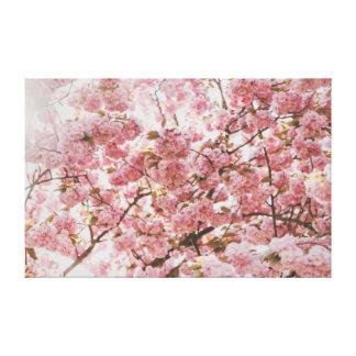 Meditation der Kirschblüten-| des Rosa-| Leinwanddruck