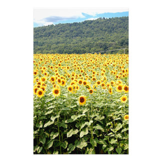 Meer der Sonnenblumen Briefpapier