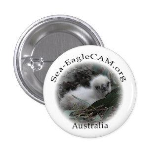 Meer-Eagle Hatchlings-Knopf Runder Button 3,2 Cm