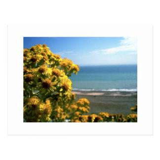 Meer und Blumen Postkarte