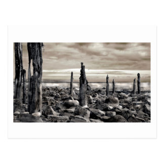 Meerblick - Morgen-Liegeplätze Postkarte