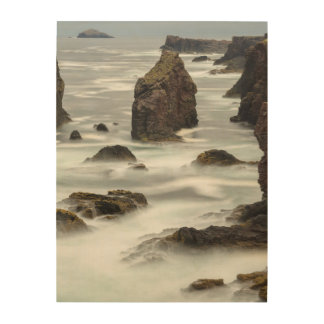 Meerblick und Seestapel, die Shetlandinseln Holzdruck