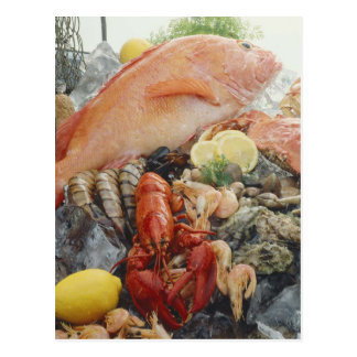 Meeresfrüchte Postkarte