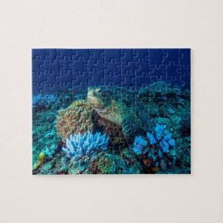Meeresschildkröte auf dem Great Barrier Reef Puzzle