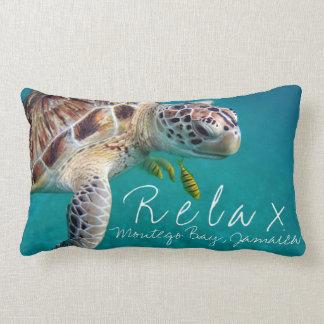 Meeresschildkröte entspannen sich Ferien besonders Lendenkissen