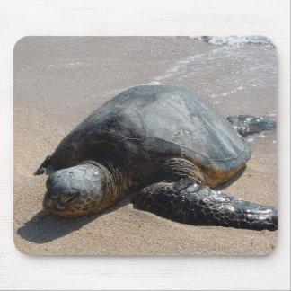 Meeresschildkröte - Oahu Hawaii Mauspad