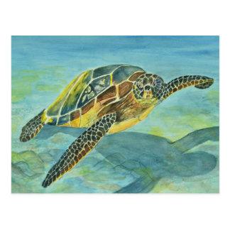Meeresschildkröte Postkarte