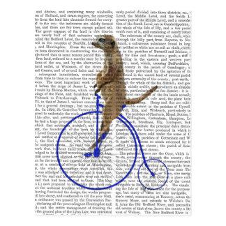 Meerkat auf blauem Penny-Farthing Postkarte