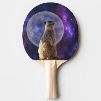 Meerkat auf blauer Mondschein-Nachtwache, Tischtennis Schläger