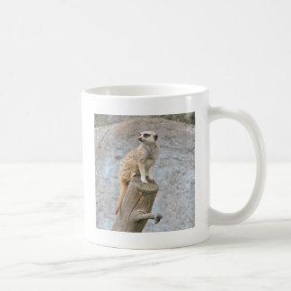 Meerkat auf einem Klotz Kaffeetasse