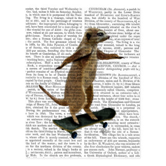 Meerkat auf Skateboard 2 Postkarte