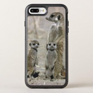 Meerkat Baby-Modell und Welpen (SuricataSuricata) OtterBox Symmetry iPhone 8 Plus/7 Plus Hülle