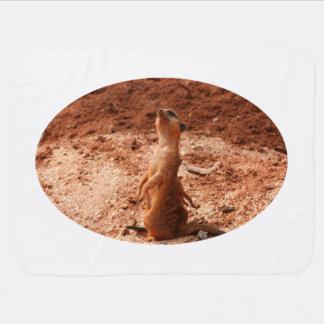 meerkat, das oben Himmel-Tierentwurf betrachtet Puckdecke