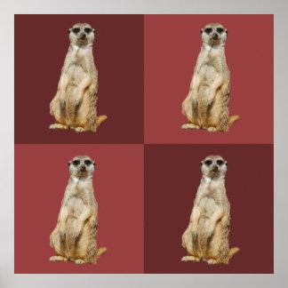Meerkat dunkelrote Quadrate Poster