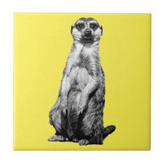 Meerkat Fliese
