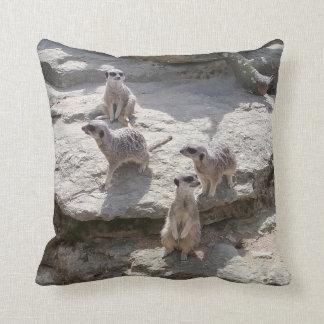Meerkat Kissen