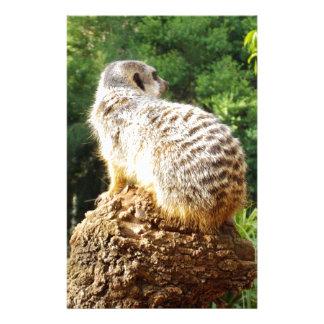 Meerkat mit hohen Ansichten, Briefpapier