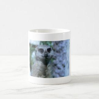 Meerkat Schatz Kaffeetasse