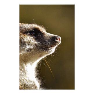 Meerkat Tiernatur-Zoo Tiergarten kleiner Pelz Briefpapier