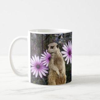 Meerkat und Gänseblümchen, Kaffeetasse