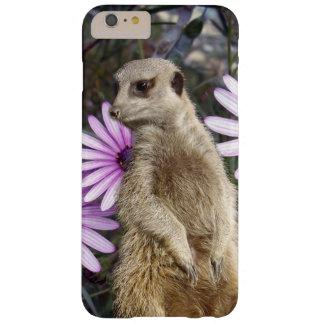 Meerkat und lila Gänseblümchen, Barely There iPhone 6 Plus Hülle