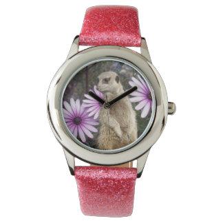 Meerkat und lila Gänseblümchen, Uhr