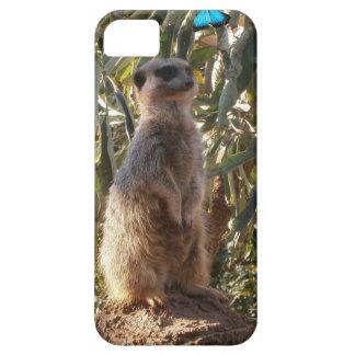 Meerkat und Schmetterling, iPhone 5 Case