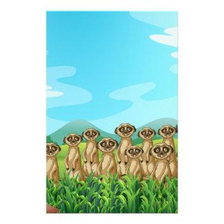 Meerkats Briefpapier